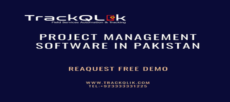 How Project Management Software in Pakistan Added Value in Business Growth