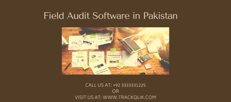 What Exactly Is Field Audit Software in Pakistan And How Can It Help You?